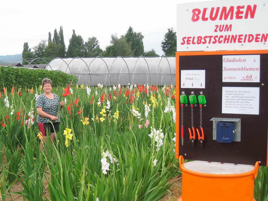Цветы на доверии: бизнес по-немецки