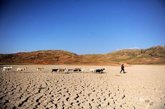 Фото дня: три года засухи в Юннани
