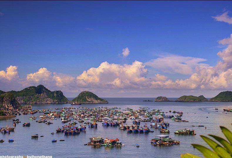 Фото дня: водный мир во Вьетнаме