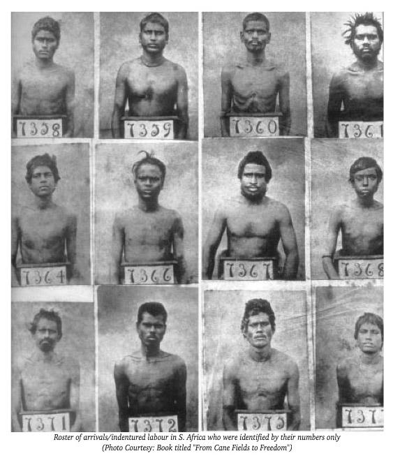 (Белые люди обращали в рабство не только негров, но и индоевропейцев – на этом фото показаны рабы, завезённые из Индии в Южную Африку)