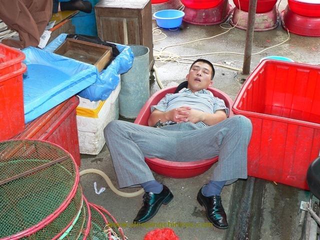 Фото дня: как спят китайцы