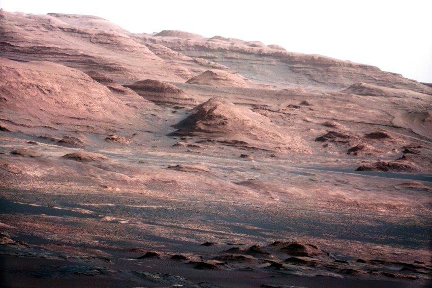 Фото недели: Марс атакует в цвете