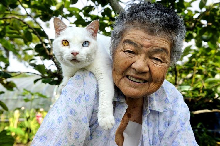 Фото недели: Японская бабушка Миса и её кот Фукумара