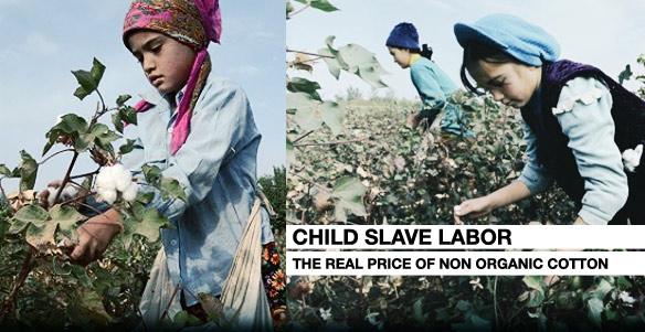Узбекский хлопок: рабский труд детей и роскошь дочери тирана