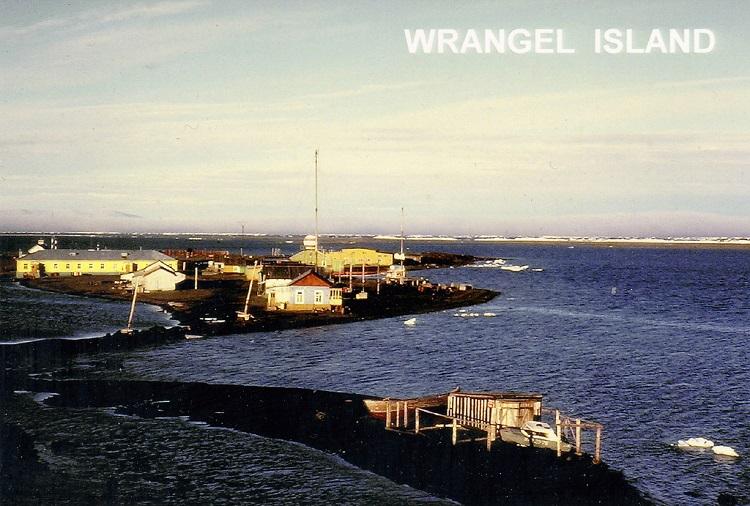 Остров Врангеля: расцвет природы без человека и власти