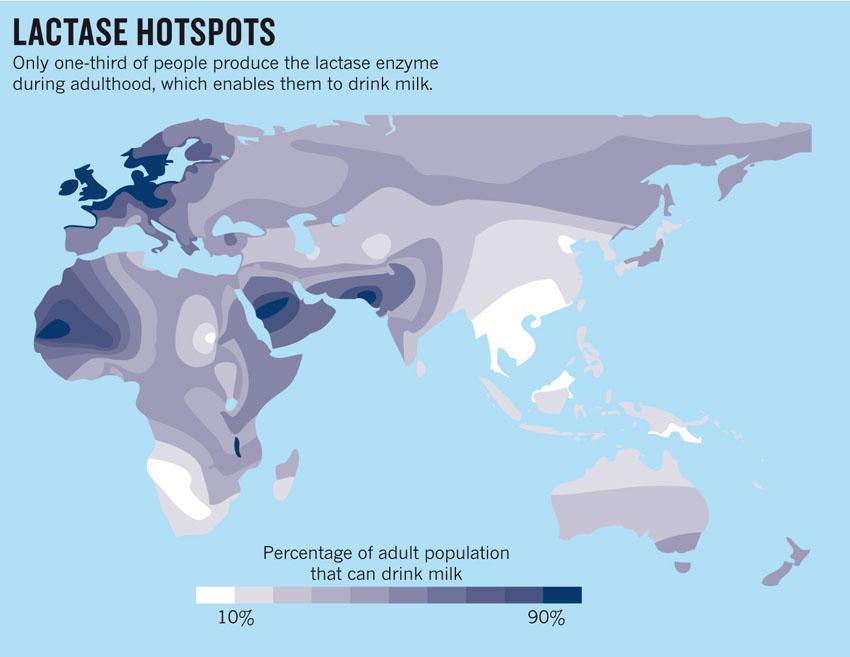 Карта дня: непереносимость молока