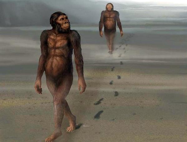 Философ Бородай: онанизм сделал из обезьяны человека