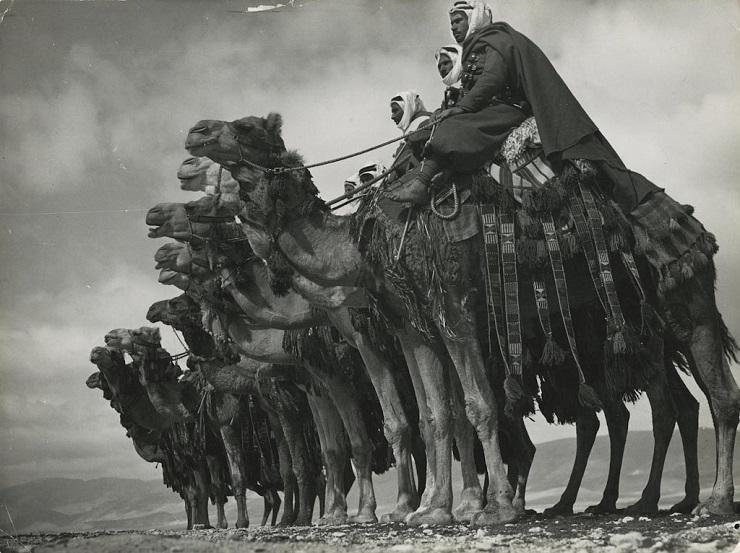 Как Англия, Франция и Турция планировали захватить Кавказ в 1940 году