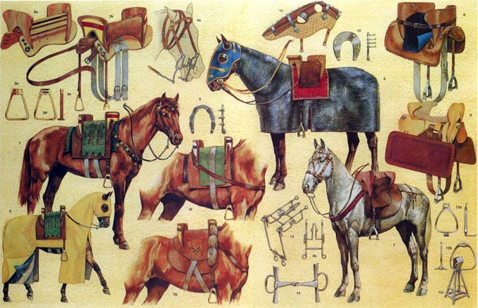 Как «модернизация» лошади в X-XI веках повела Европу к прогрессу