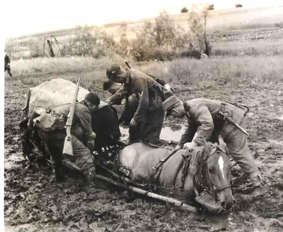 «Гитлера победила русская грязь»