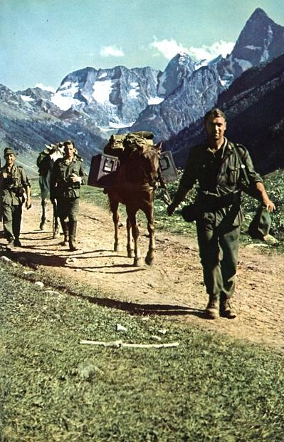 Как во время Великой Отечественной чеченцы воевали за Гитлера