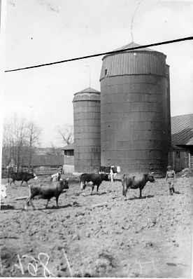 Как жила в СССР в 1920-е еврейская животноводческая коммуна «Герольд»