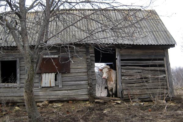 деревня-1