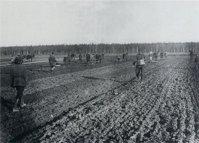 Российские помещики в конце XIX века променяли землю на ренту