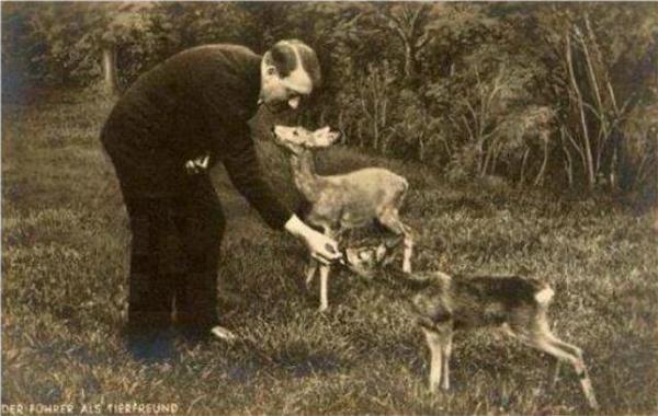Гитлер как защитник прав животных