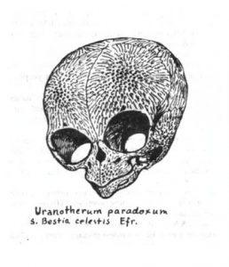 рептилоид-гл
